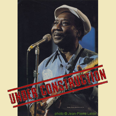 Illustrated Muddy Waters discography